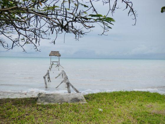 Sarteneja, Projet FAVI Belize