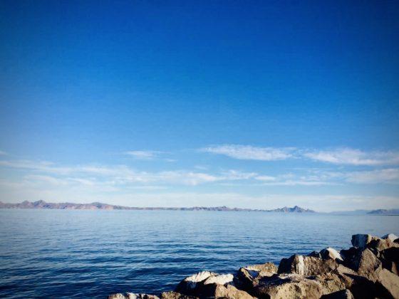 La FAVI à Loreto, Baja California . Magnifique!