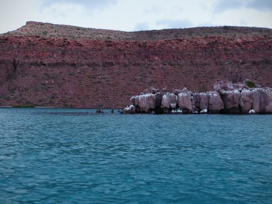 Espiritu Santo, Baja California Sur