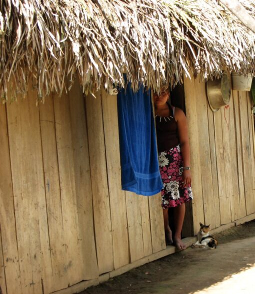 Fondation Aide Vétérinaire Internationale au Belize