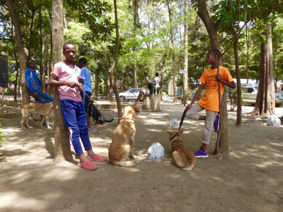 Des jeunes Tanzaniens et leur chien attendent à la station de vaccination
