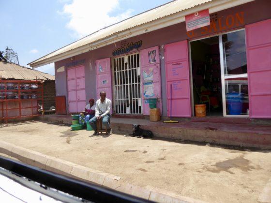 Un chien de communauté à Arusha, Tanzanie