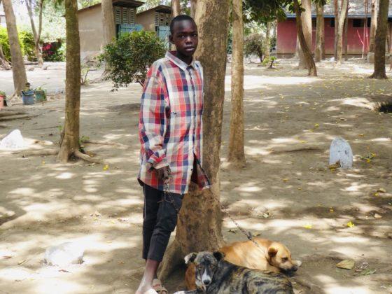 Un jeune Tanzanien et ses chiens à la clinique de vaccination à Arusha, Tanzanie