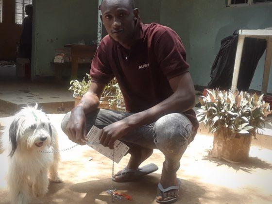 Très très rare de voir ce type de chien en Tanzanie!