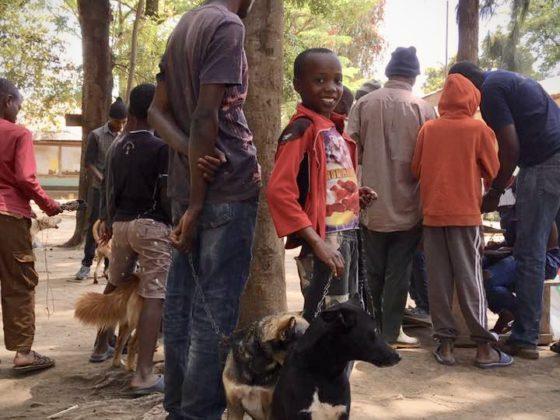 Un jeune et fier propriétaire de chien vient le faire vacciner contre la rage