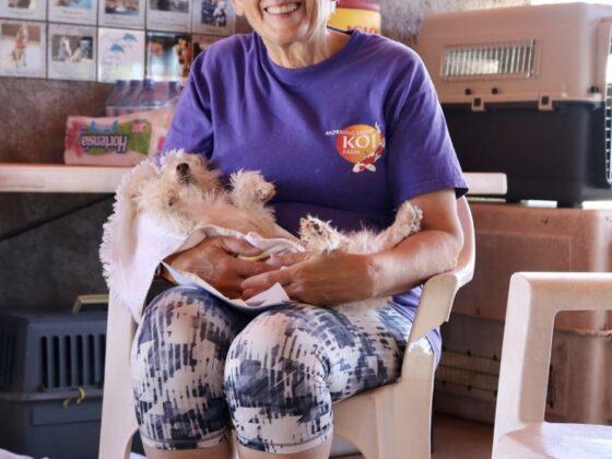 Une bénévole réconforte un patient du refuge Animalandia
