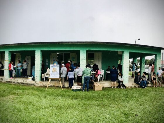 Une clinique vétérinaire FAVI fort achalandée à San Joaquin, Belize