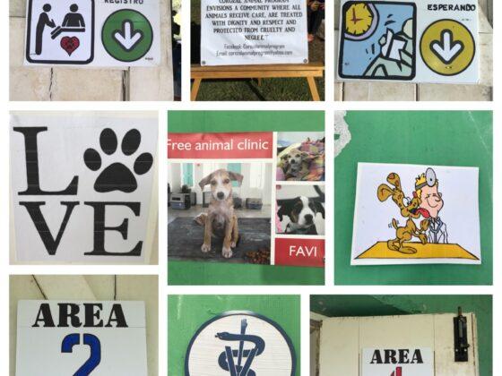 Différentes stations à la clinique vétérinaire FAVI au Belize
