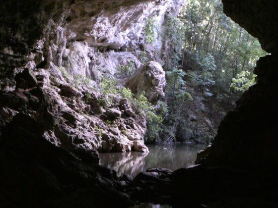 Visite d'une grotte près de San Ignacio lors de notre journée de congé