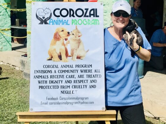 Notre partenaire Corozal Animal Program (CAP)