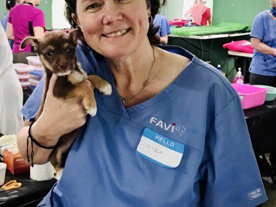 Une bénévole FAVI à l'accueil de la clinique à San Joaquin, Belize