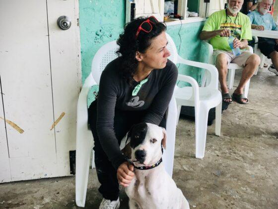 Une bénévole réconforte un chien à la clinique FAVI à San Joaquin, Belize