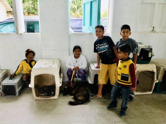 Salle d'attente clinique FAVI à Sarteneja