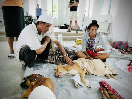 Station de réveil clinique FAVI au Belize