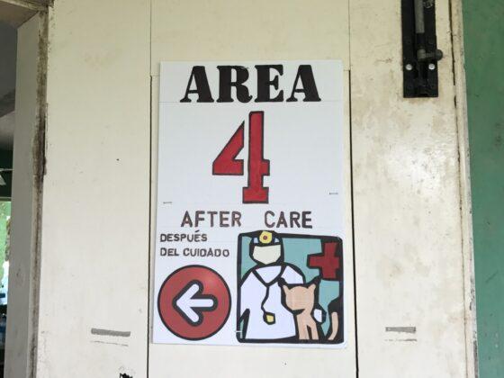 Station 4, c'est par ici!