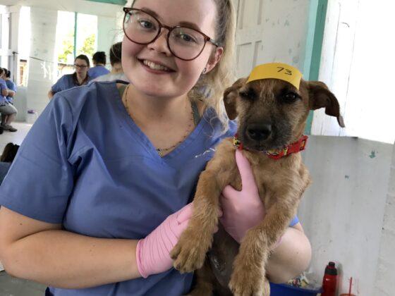 Une technicienne bénévole de la FAVI au Belize