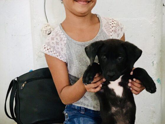 Une jeune belizienne et son chien à la clinique FAVI