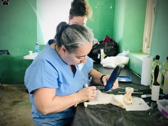 Station pré-opératoire clinique FAVI à San Joaquin , Belize