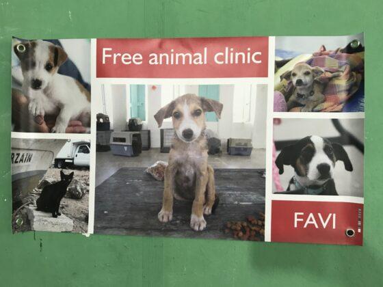 Clinique vétérinaire FAVI gratuite au Belize