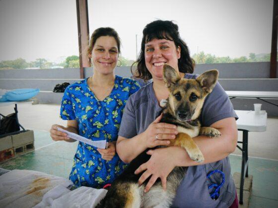 Deux techniciennes de la Clinique Vétérinaire de Beaumont en mission humanitaire au Belize
