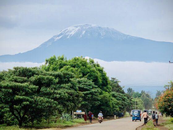 Kilimanjaro, Tanzanie