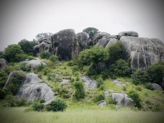 Kopje; petite colline sur laquelle se dresse d'imposants rochers