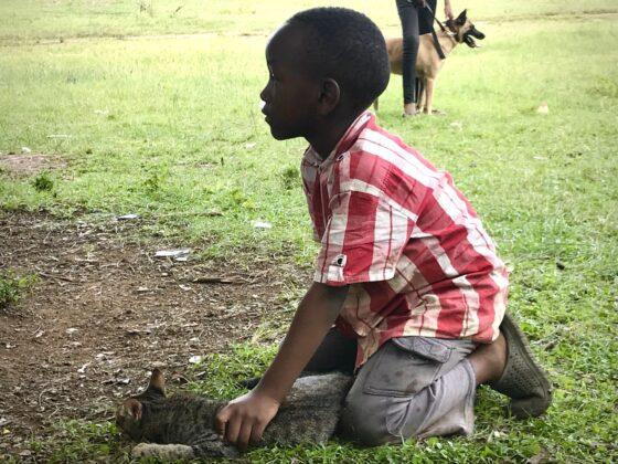 Un enfant et son chat à la clinique FAVI en Tanzanie