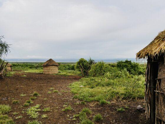 Boma massaï en Tanzanie, safari FAVI