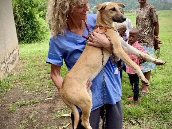 Dre Laura, vétérinaire bénévole FAVI en Tanzanie