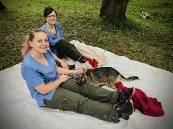 Jade, étudiante finissante en médecine vétérinaire réconforte un de nos patients